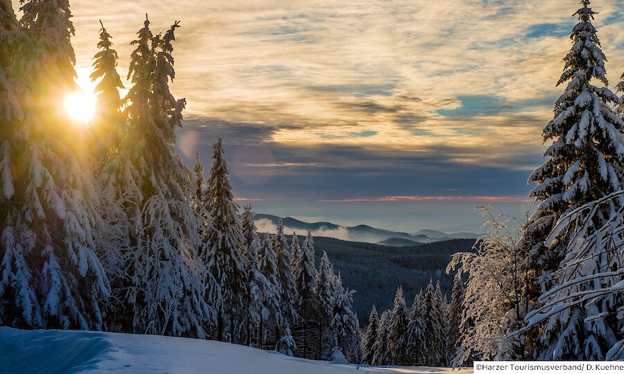 Advent im Harz – Harz Winter Landschaft