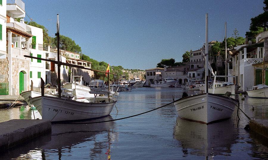 Flugreise - Mallorca zur Mandelblüte – Cala Figuera