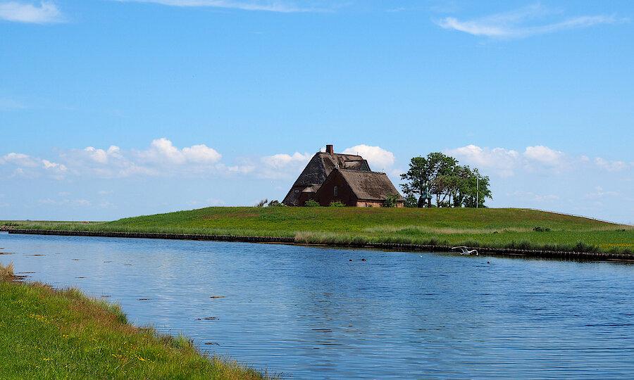 Frühling an der Nordsee – ROT71116