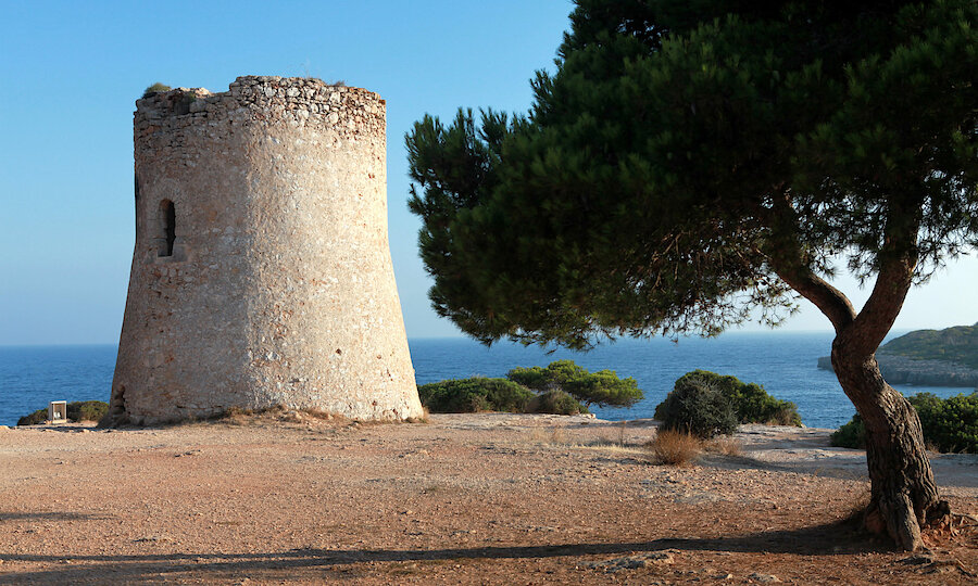Flugreise - Mallorca zur Mandelblüte – Cala Pi
