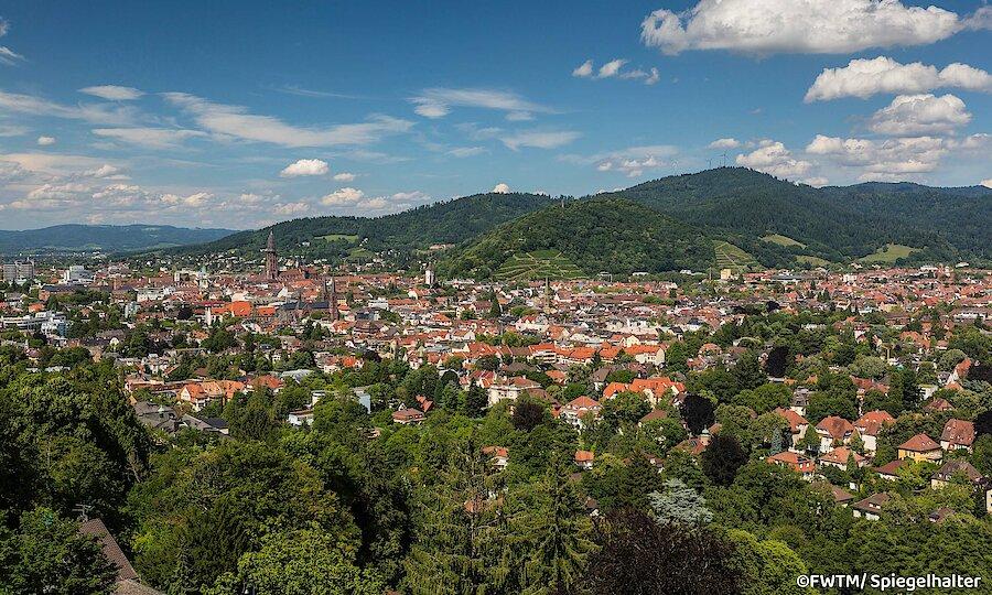 Schwarzwald & badischer Wein – Blick über Freiburg