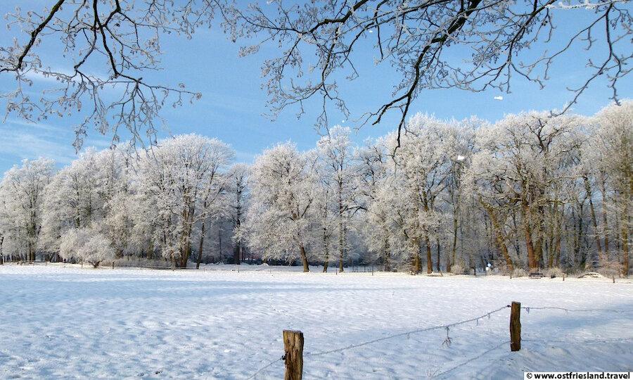 Weihnachten in Ostfriesland – Evenburgpark im Winter